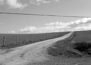 Los caminos